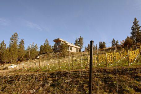 Naramata Vineyard Home